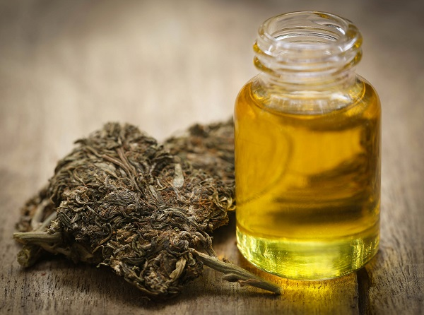 Bottle of cannabis oil used for relief of cancer treatment symptoms in Tampa