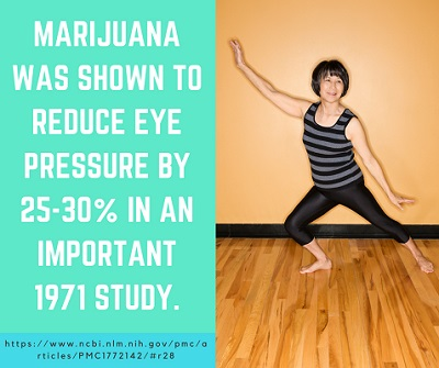 Cannabis and glaucoma treatment St. Petersburg
