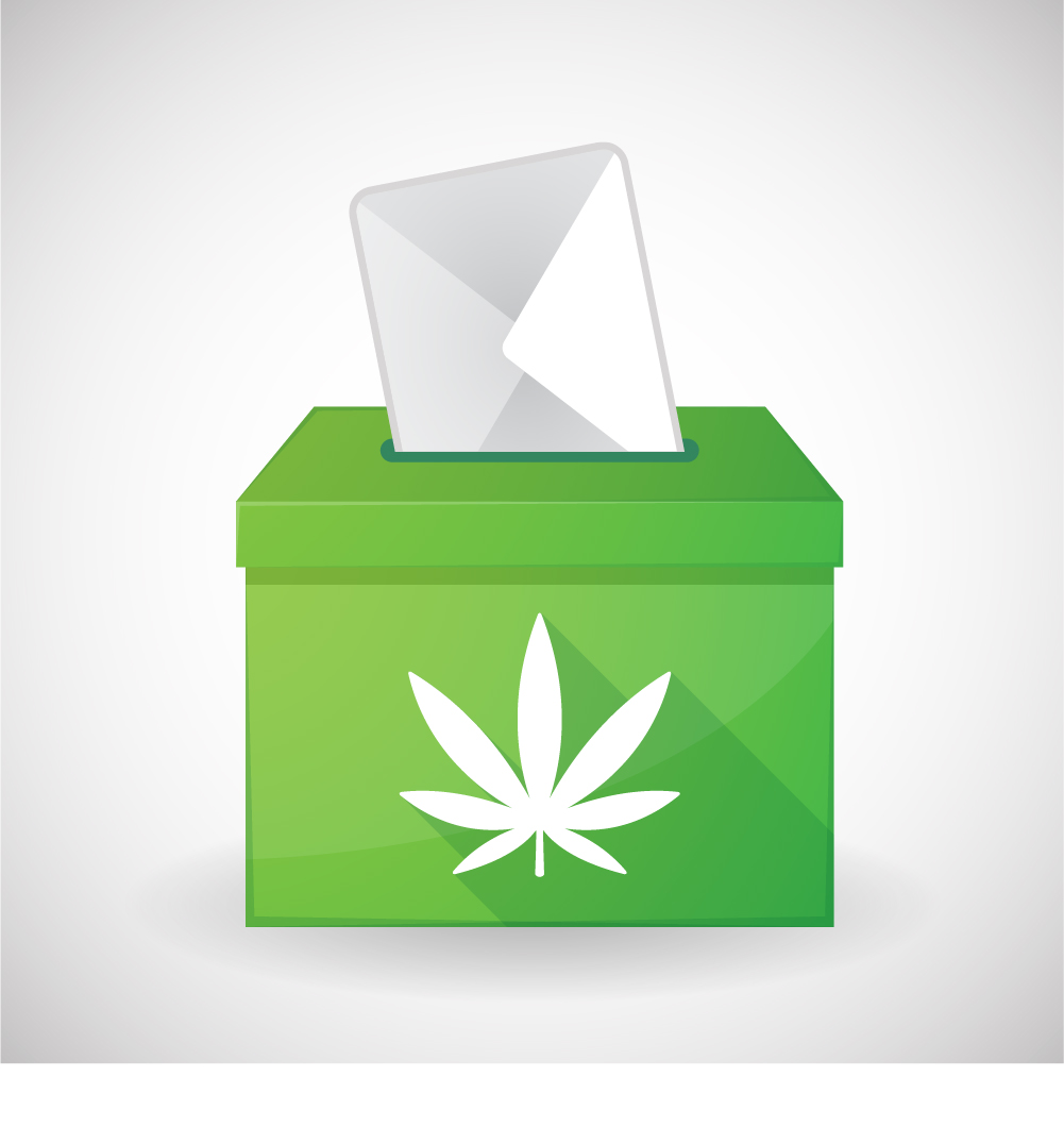 Voting to legalize marijuana